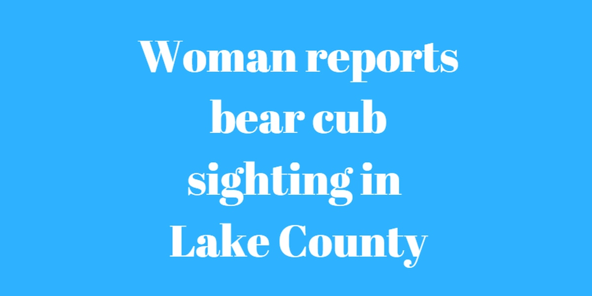 Lake County Sheriff advises people not to leave food out in yards after report of bear sighting