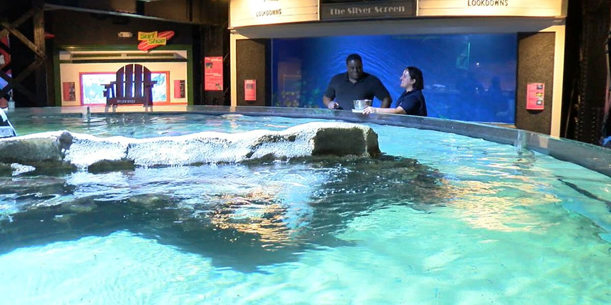 Do My Job: Behind the scenes at the Greater Cleveland Aquarium