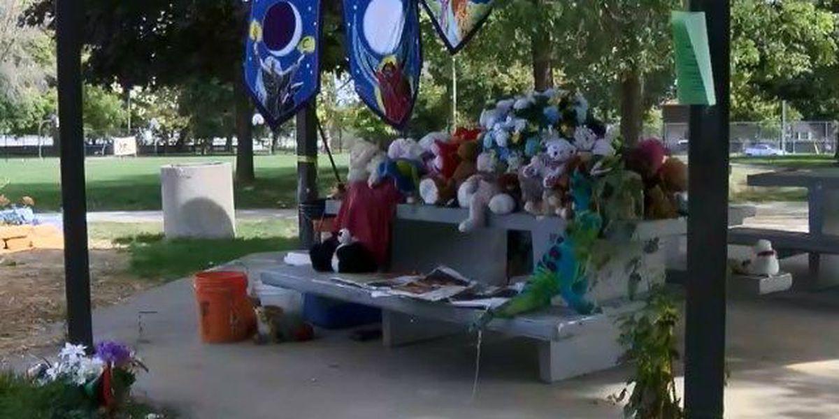 City agrees to demolish gazebo where Tamir Rice was shot