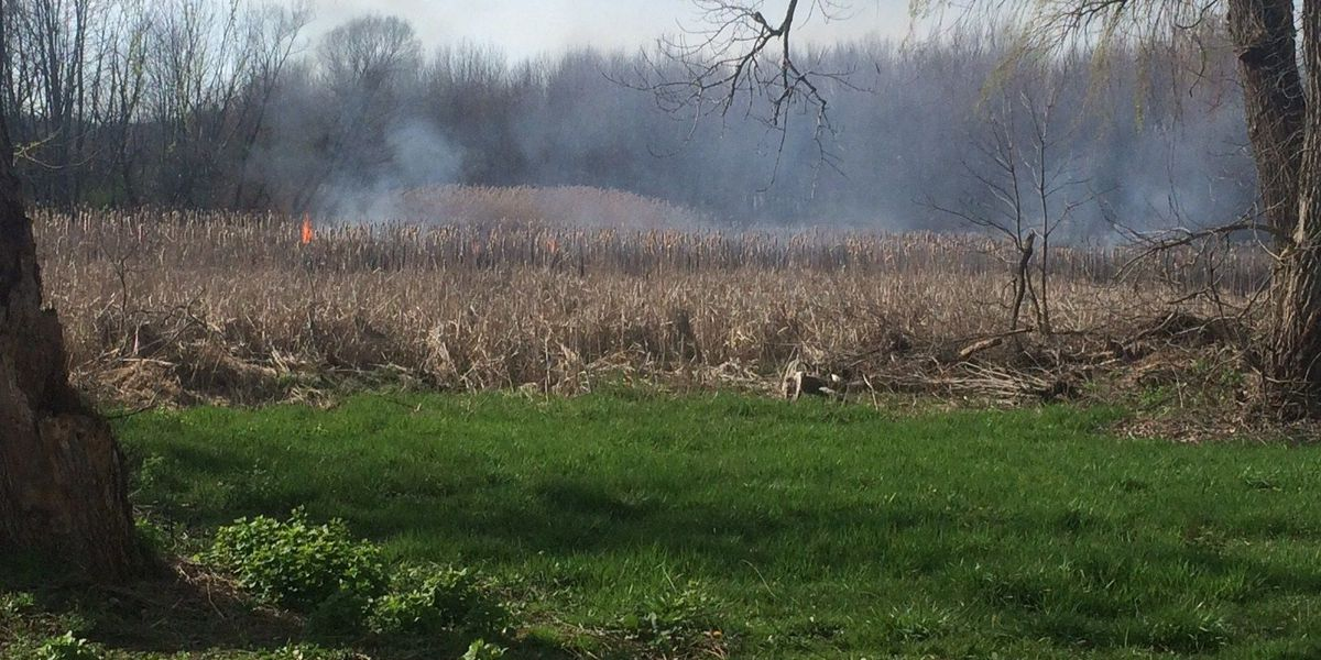 Brush fire slows traffic along I-76 near Barberton