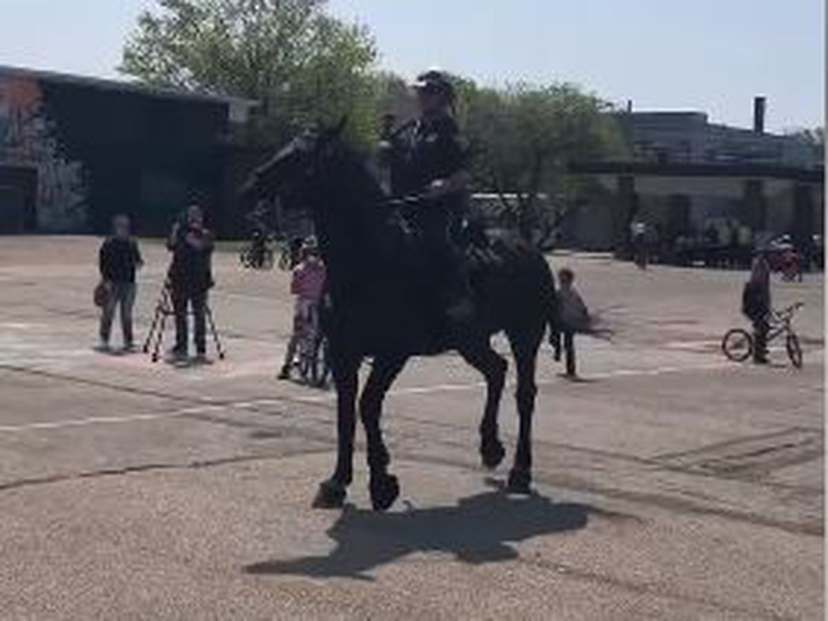 Cleveland Mounted Police Officer doesn't back down from a dance challenge
