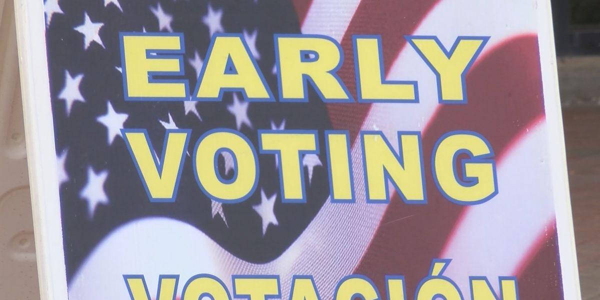 Several dozen North Ridgeville residents didn't receive their absentee ballots