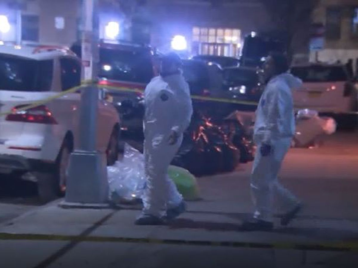 Mother, son found bludgeoned to death in New York