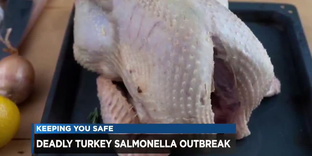 CDC issues raw turkey warning after dozens sickened, 1 dead in salmonella outbreak