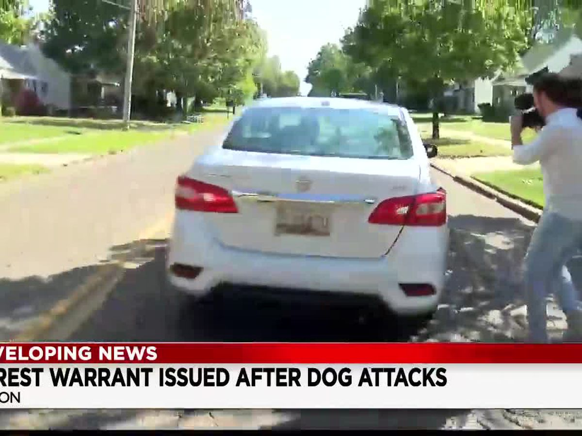 Akron pit bull owner who's dogs mauled 4 people now on the run after fleeing in Lyft car