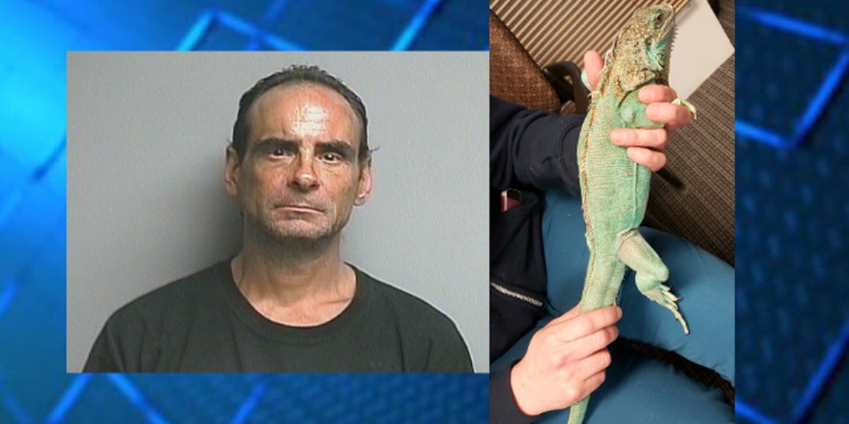 Bond reduced for man accused of throwing iguana at Perkins manager