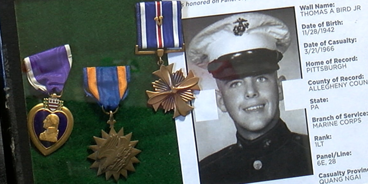 Family says NEO auction house is selling fake military medals; auction house insists they are real