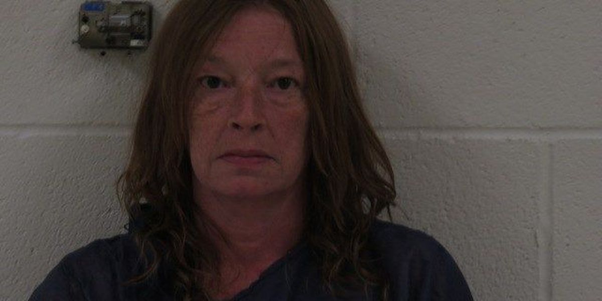 Woman pleads guilty to starting fire that killed boyfriend