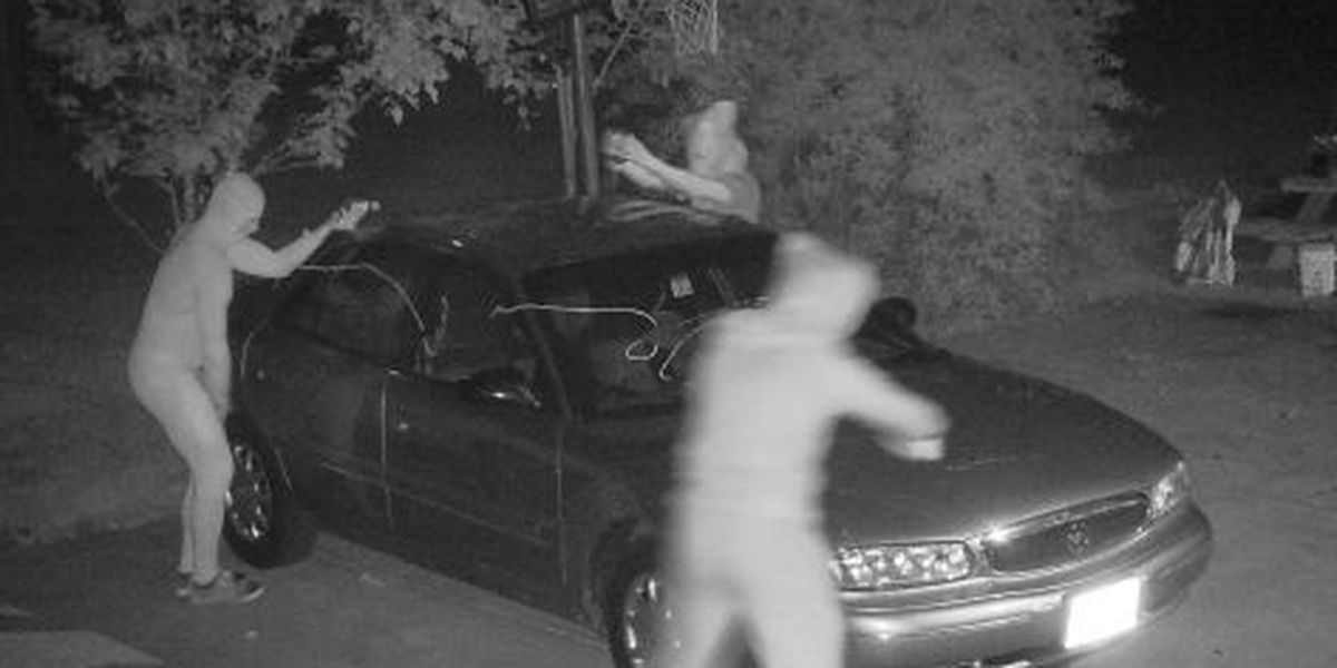 Teens caught on tape vandalizing car with condiments