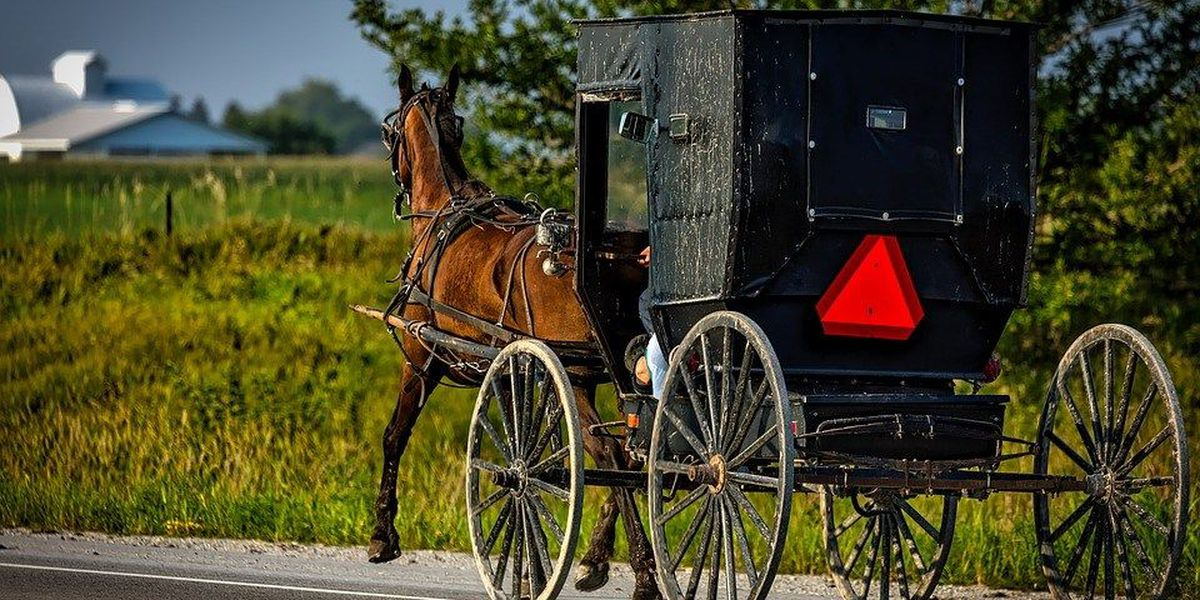 Ohio police stop driverless Amish buggy with energetic horse