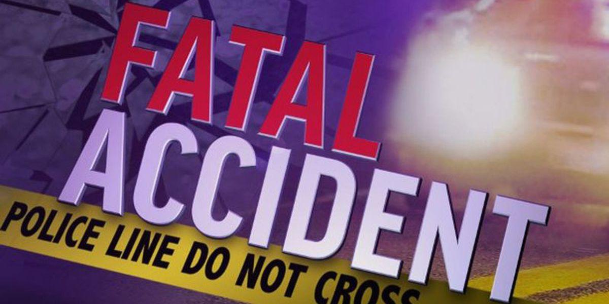 Senior citizen dies after being struck by tractor-trailer in Cleveland