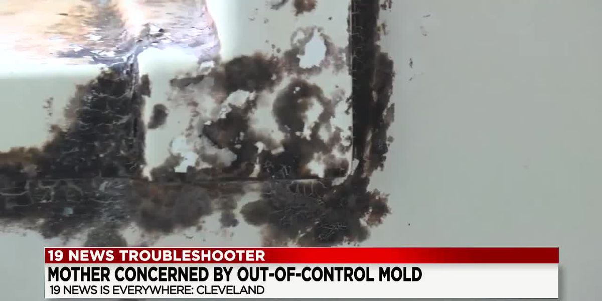 Mother fears her mold-ridden apartment will hurt her and her children