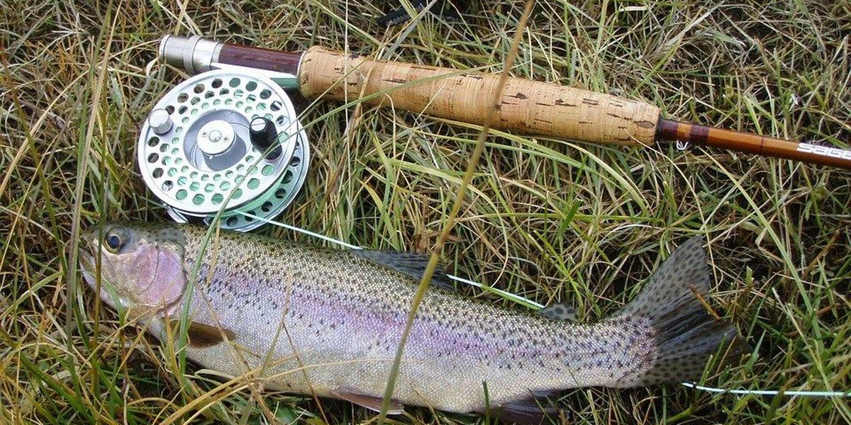 Several Ohio fishing areas to be stocked with rainbow, brown
