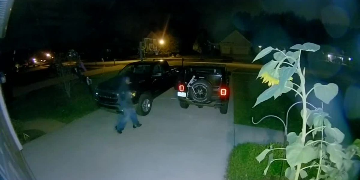 Willoughby Police search for suspect who tried to break into cars parked in driveways