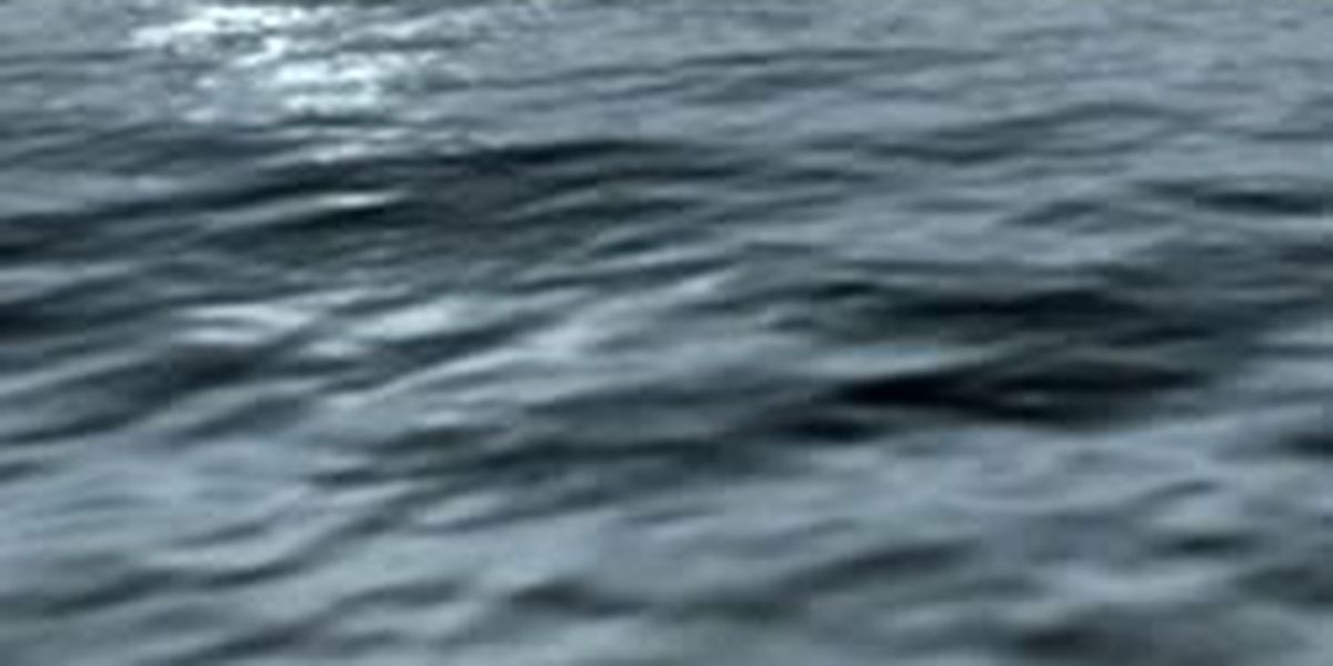 Mosquito Lake drowning victim located