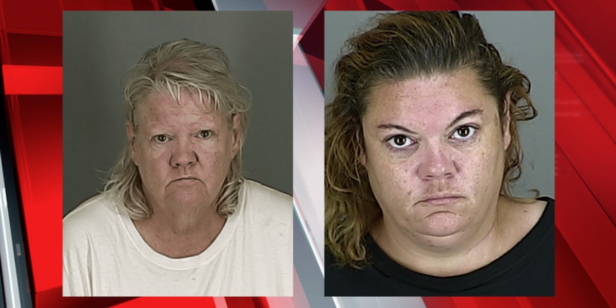 Akron Police arrest daughter of shoplifter who unleashed her dogs on grocery store employee