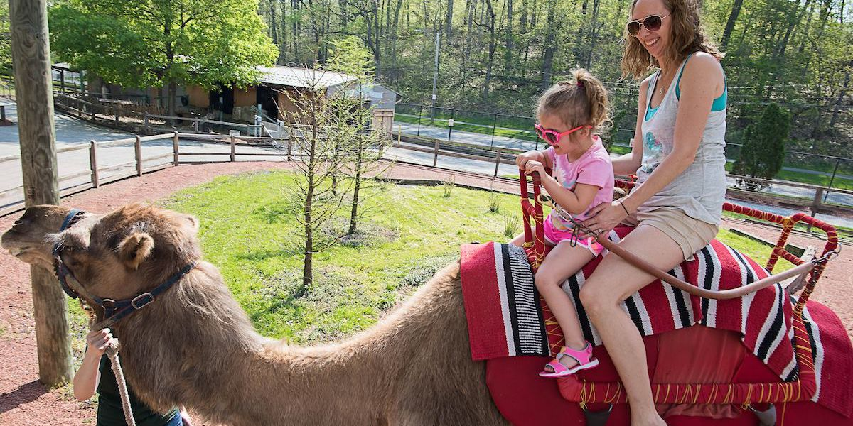 Moms get in free at the Cleveland Metroparks Zoo on Mother's Day