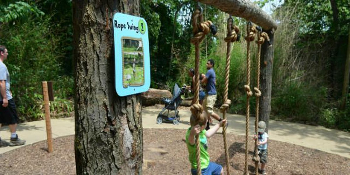 2015 Akron Zoo attendance UP