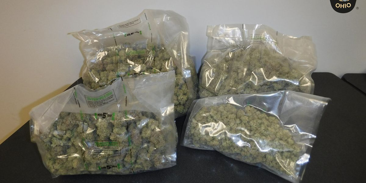 Ohio troopers sniff out pounds of marijuana during routine traffic stop; suspected dealer hit with felony drug possession