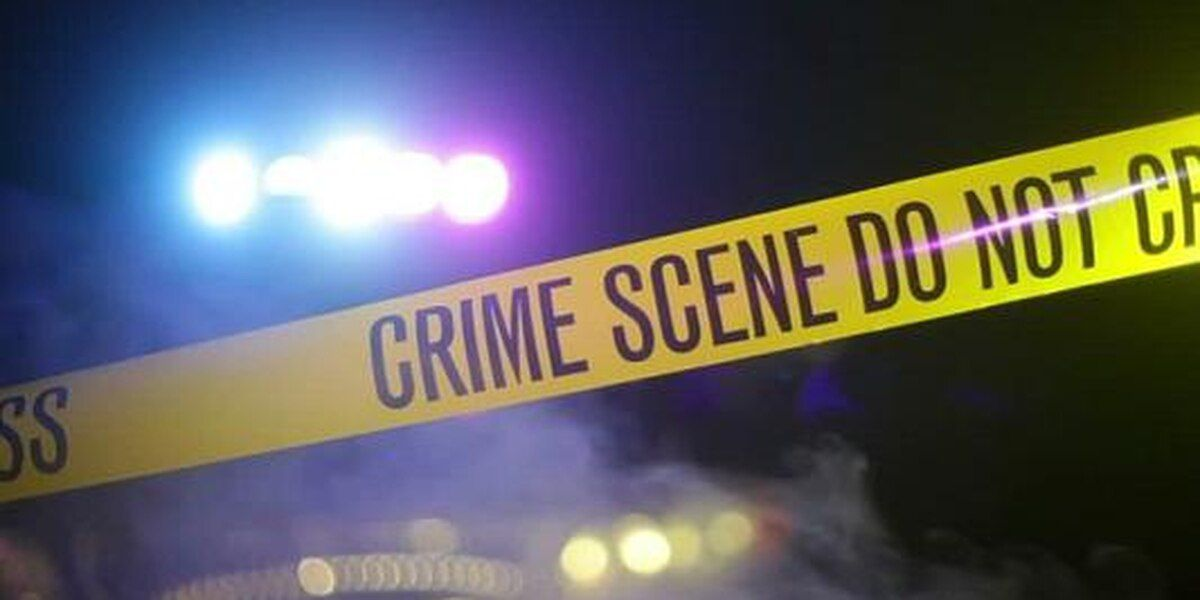68-year-old Akron man murdered in home, car stolen