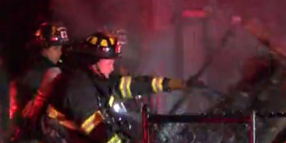 Cleveland firefighters rescue woman and cat from house fire on city's east side