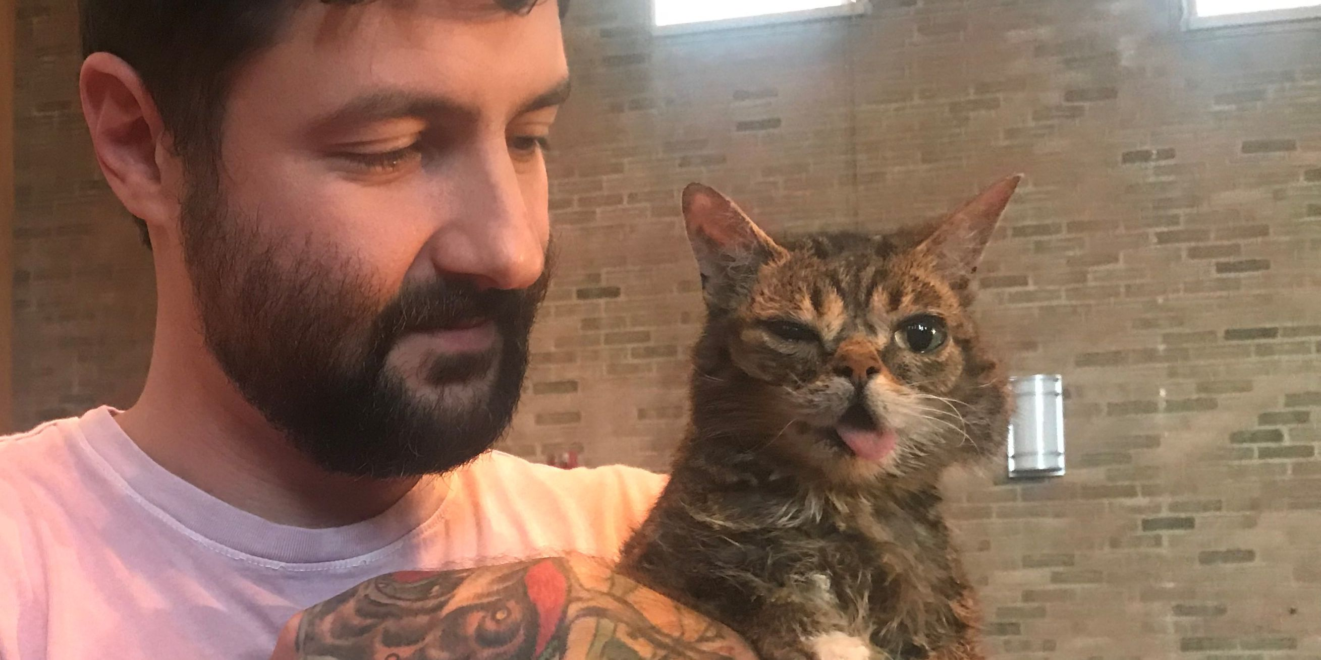 Famous cat Lil BUB comes to Cleveland to make A Special Wish come true