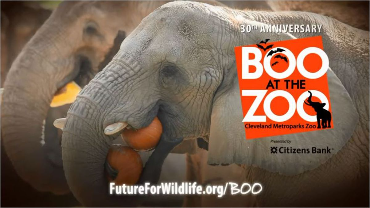 Boo at the Zoo - 2019 Ticket Giveaway