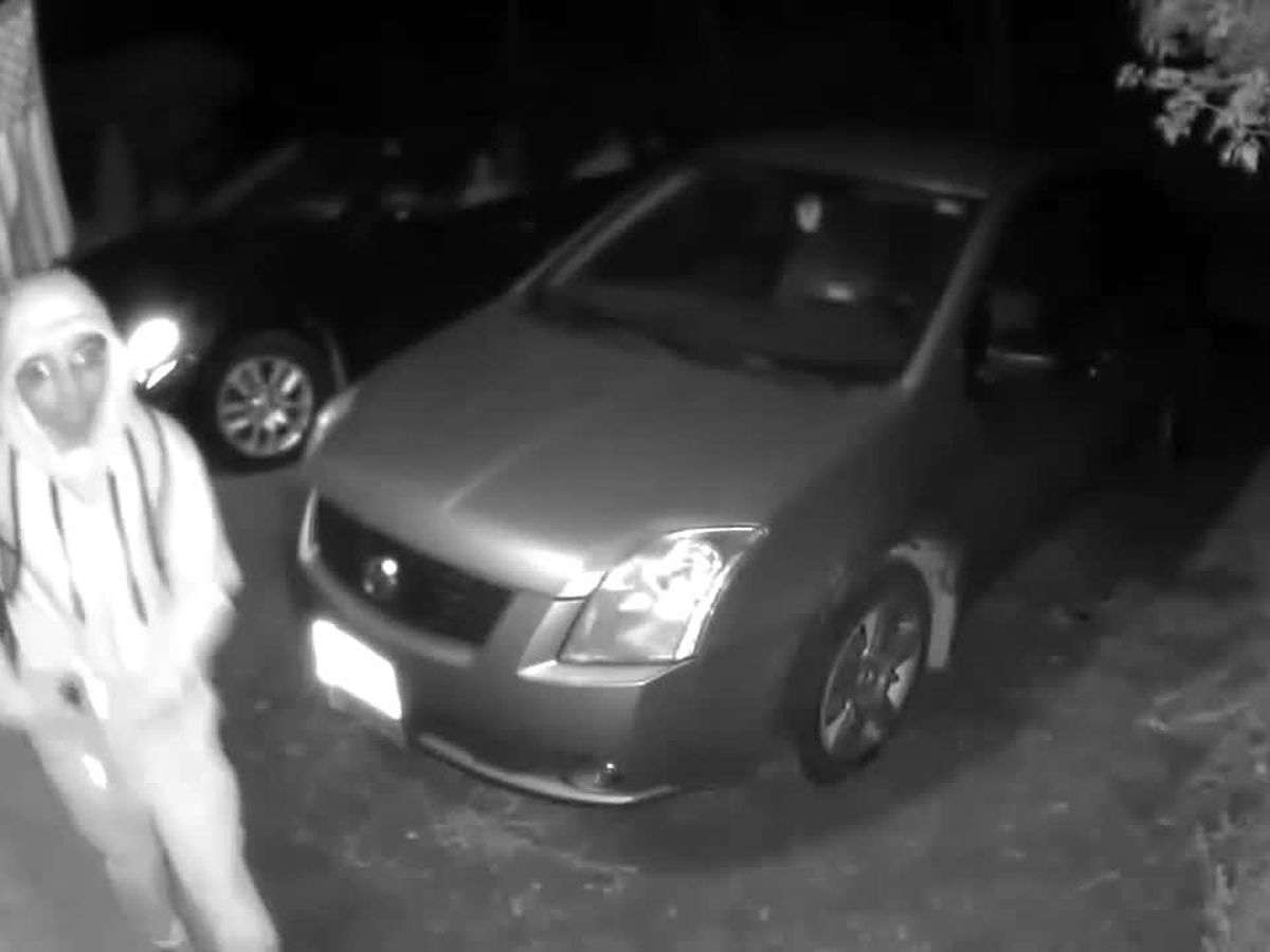 'Lock your vehicles': Suspect caught trying to break into cars in Chardon Township (video)
