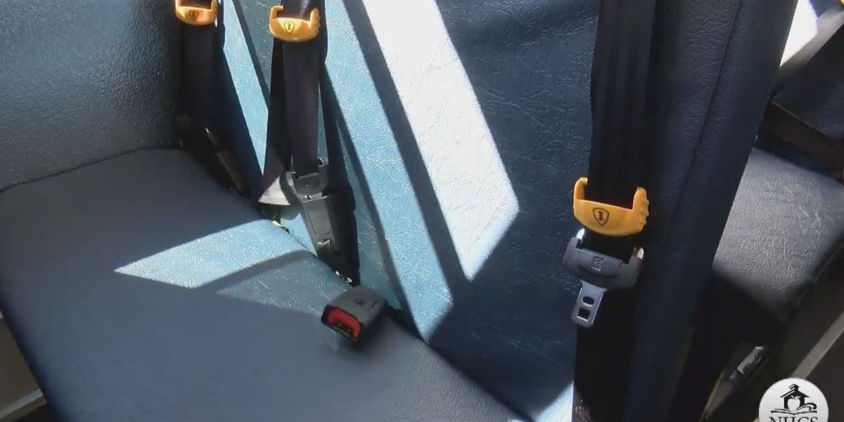 Seat belts on school buses becomes top priority for Avon Lake resident