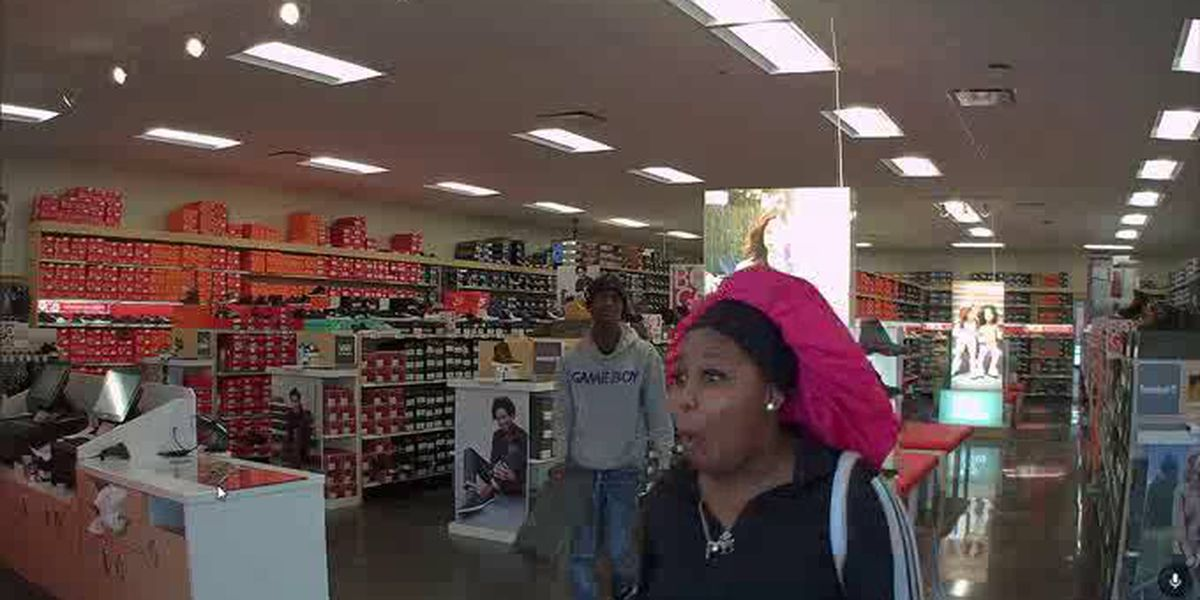 Mentor Police searching for shoplifters who drove away in stolen car