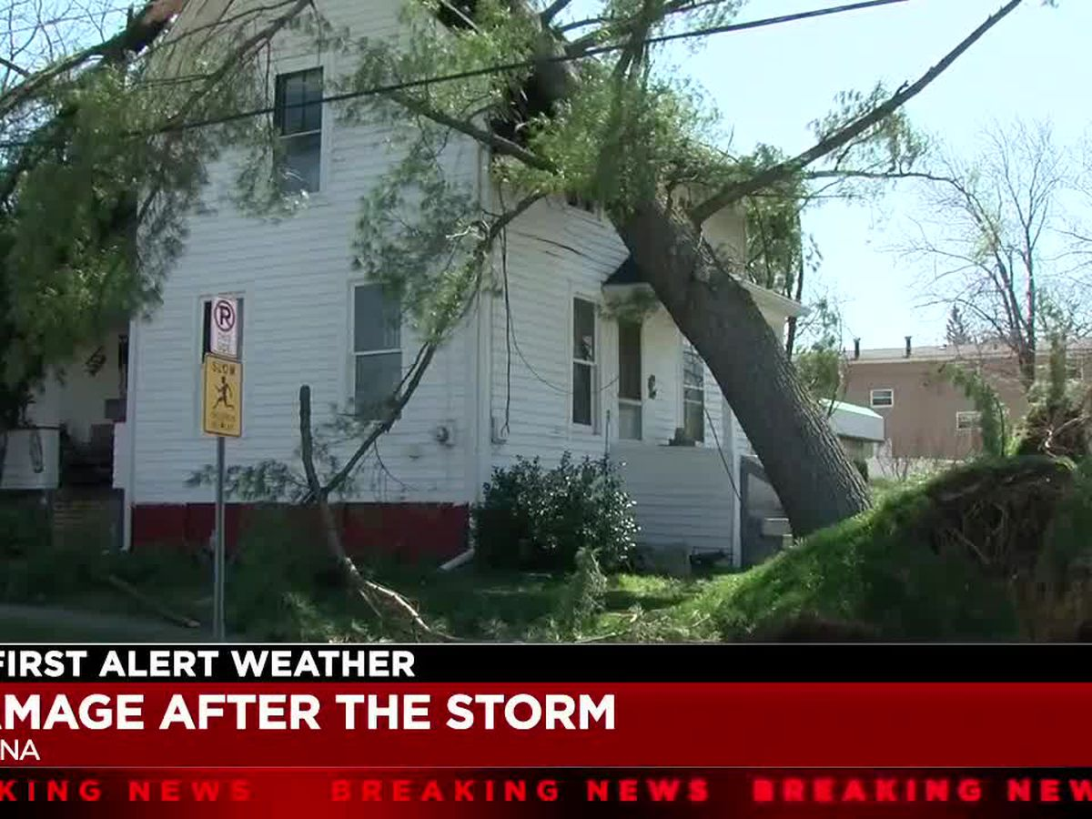 F-1 tornado rips through Medina County, uprooting trees and causing major damage
