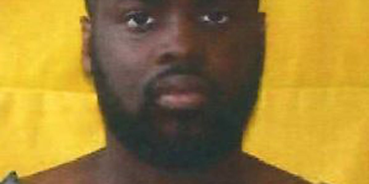 U.S. Marshals and police arrest fugitive hiding in Elyria attic