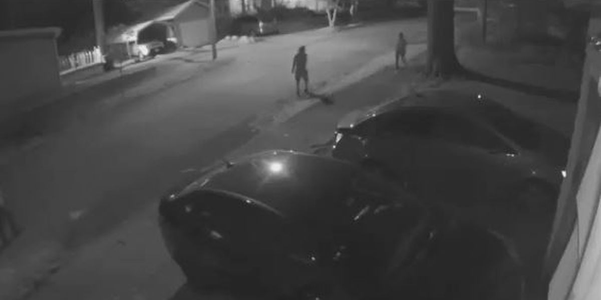 15 vehicles vandalized in Akron, police want help identifying suspects (VIDEO)