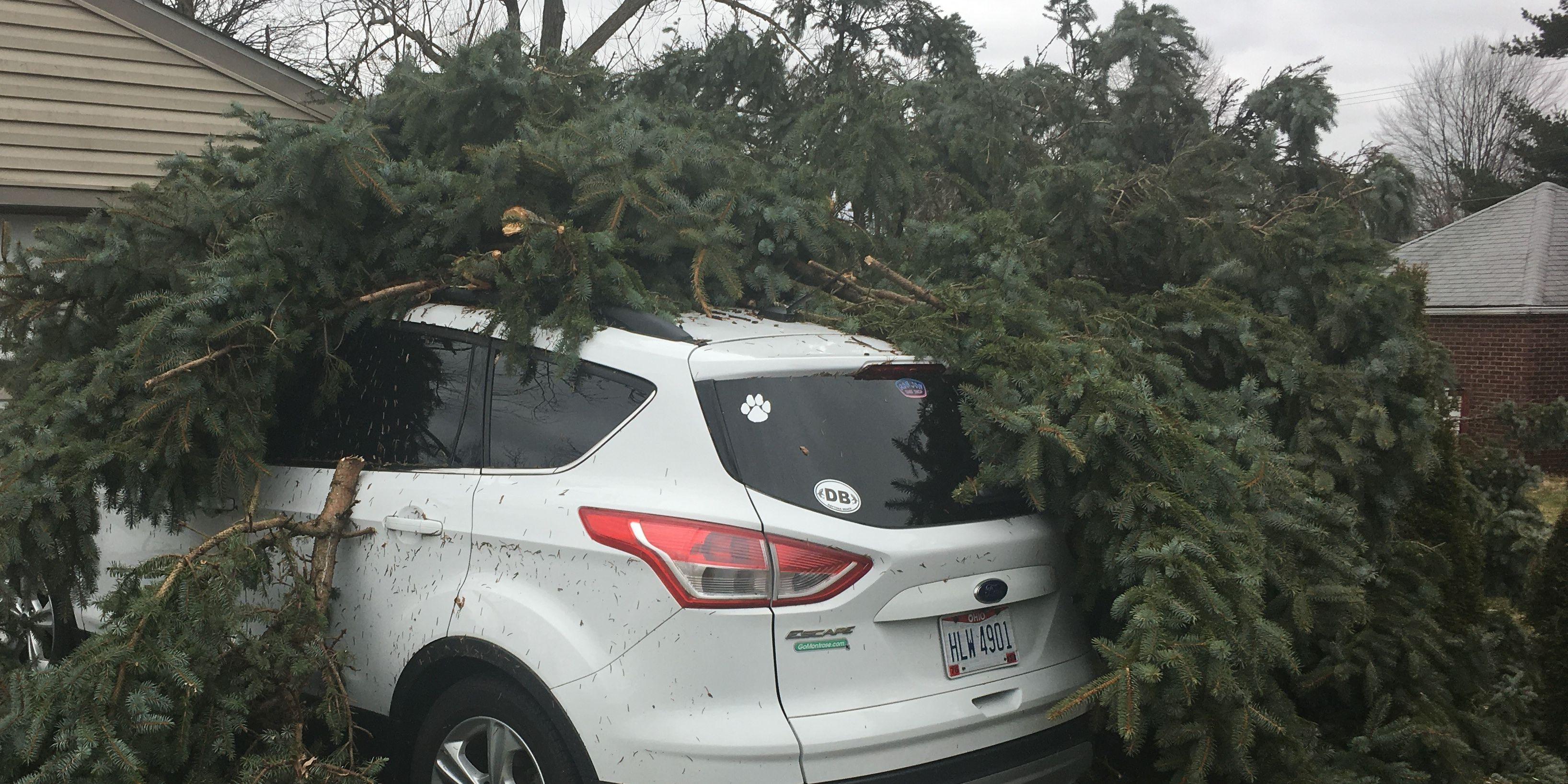 Stark County tornado rattles residents, topples trees
