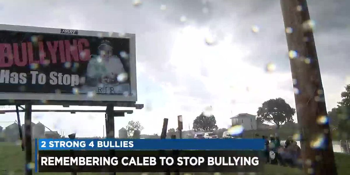 Huron County mother on a mission to prevent bullying in schools