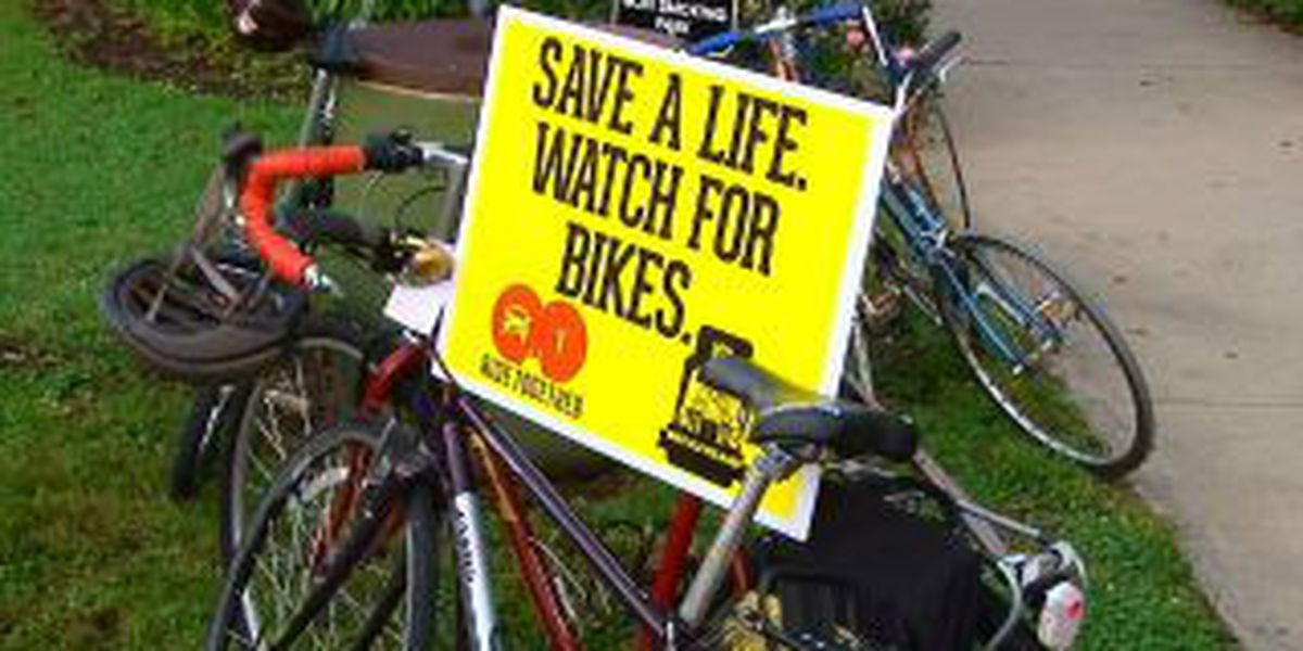 Bicycle safety stressed at memorial for slain cyclist