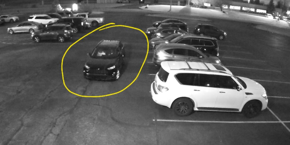Streetsboro Police search for suspects who broke into car and stole purse