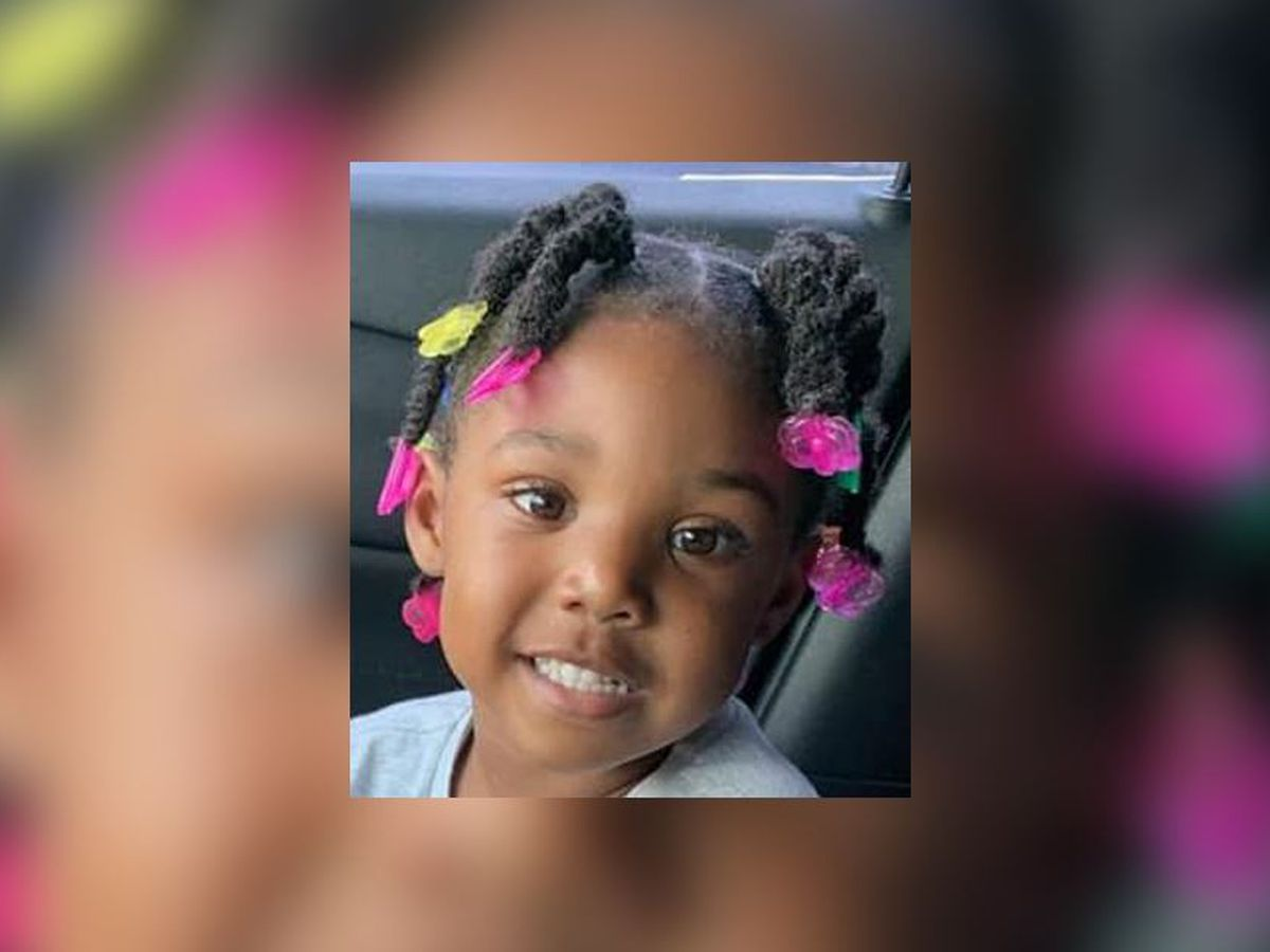 Searching for Kamille McKinney: No evidence for missing B'ham toddler found in multiple searches