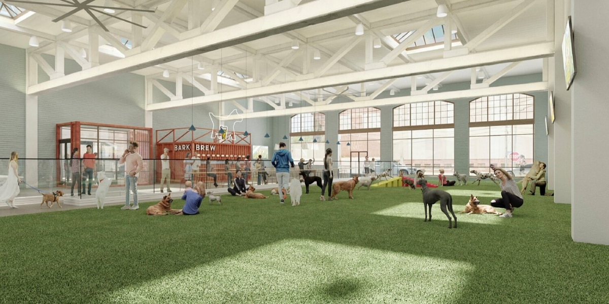 Bark & Brew indoor dog park and self-pour bar coming to Cleveland in Summer 2021
