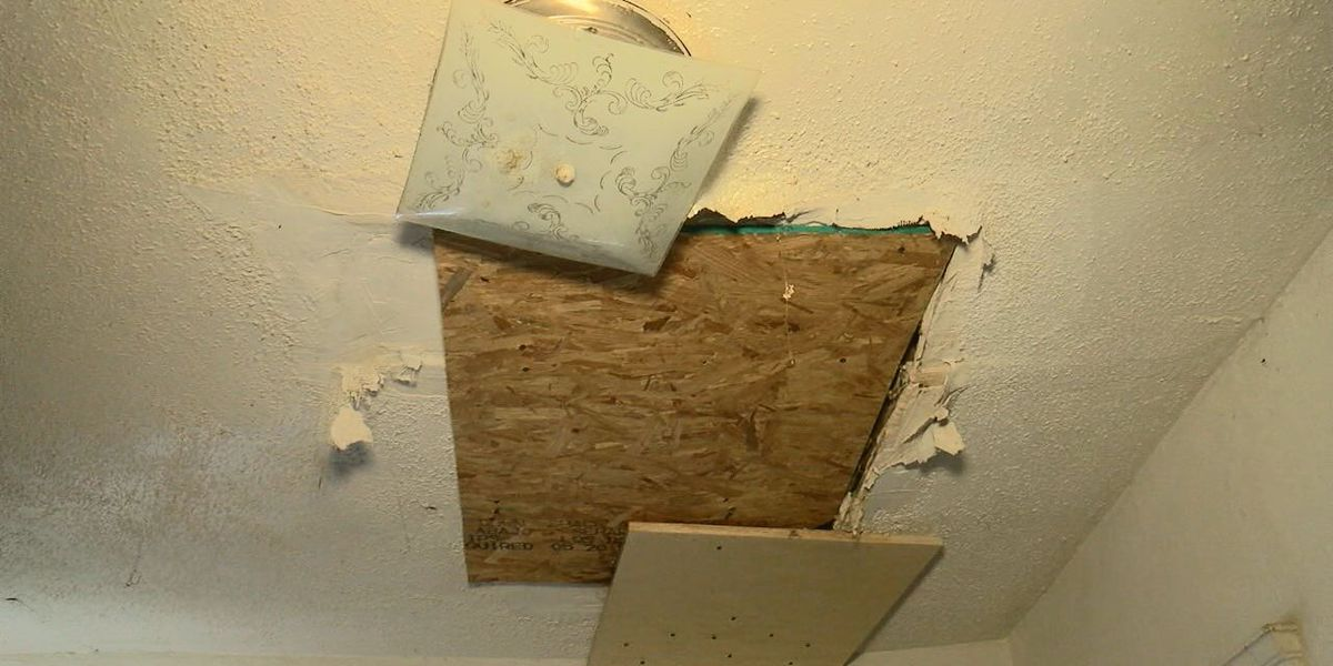 Cleveland Heights house in horrible shape as family of four shares it with rats, raccoons, and falling ceilings