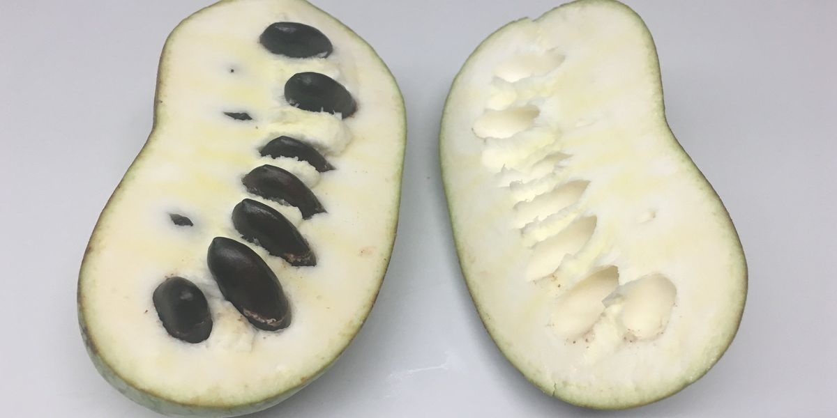The state fruit of Ohio is now in season and you've probably never even heard of it