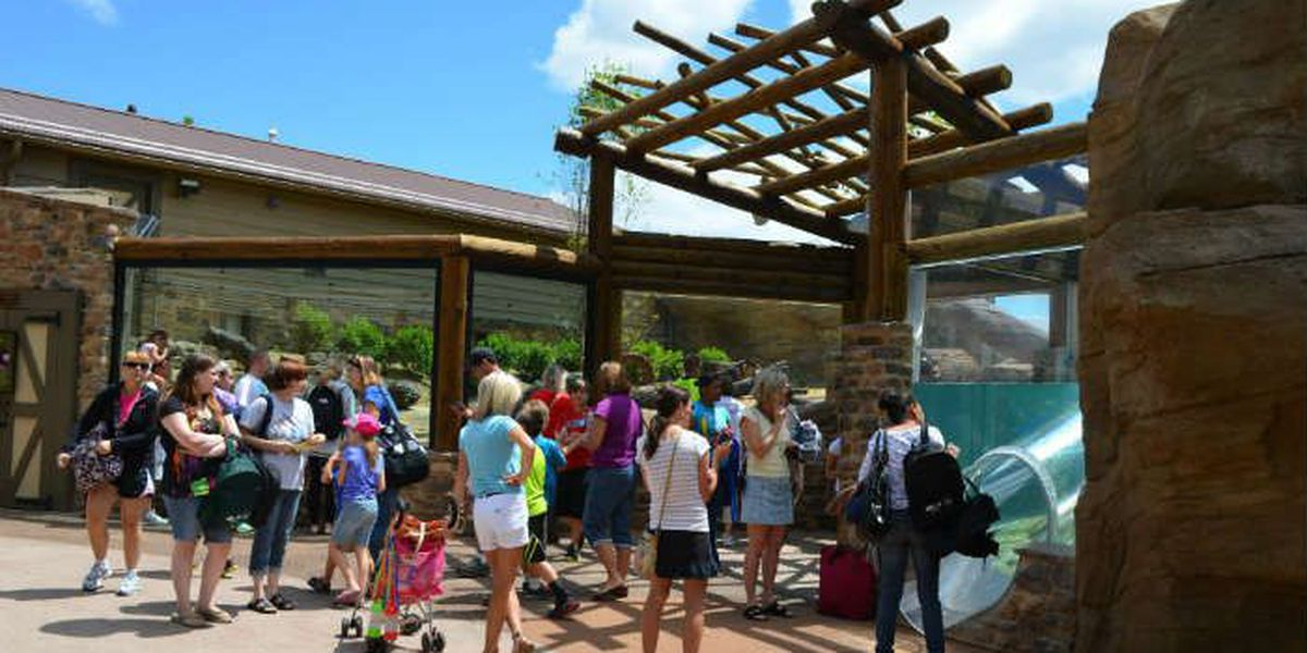 Akron Zoo sets multiple attendance records last year