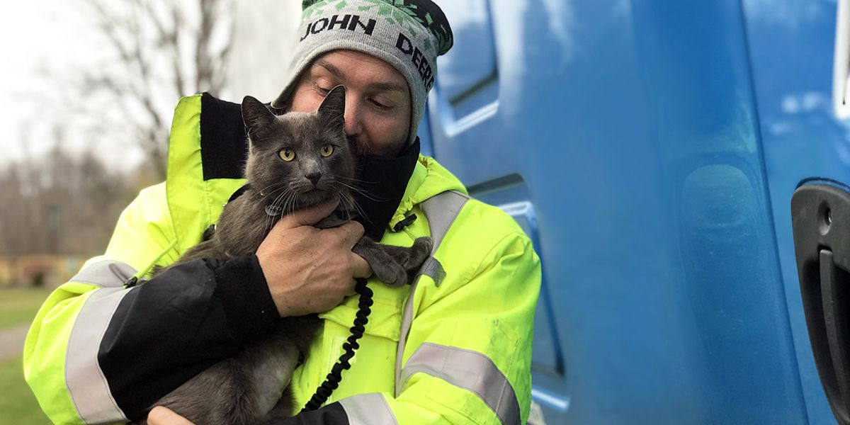 Georgia man reunited with 'cross-country cat' at Ohio truck stop