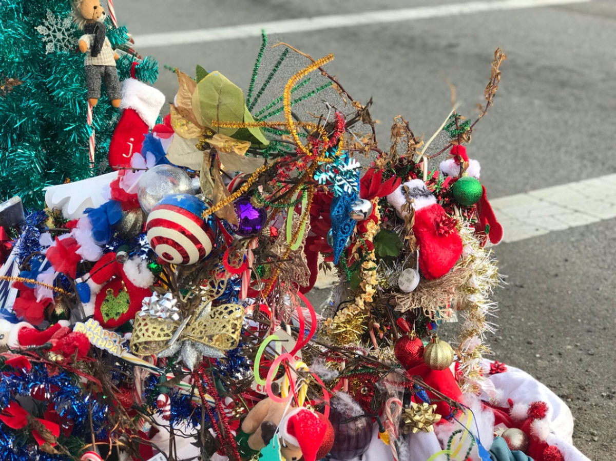 Toledo Gas Prices >> The Toledo Christmas Weed is a viral sensation sweeping ...