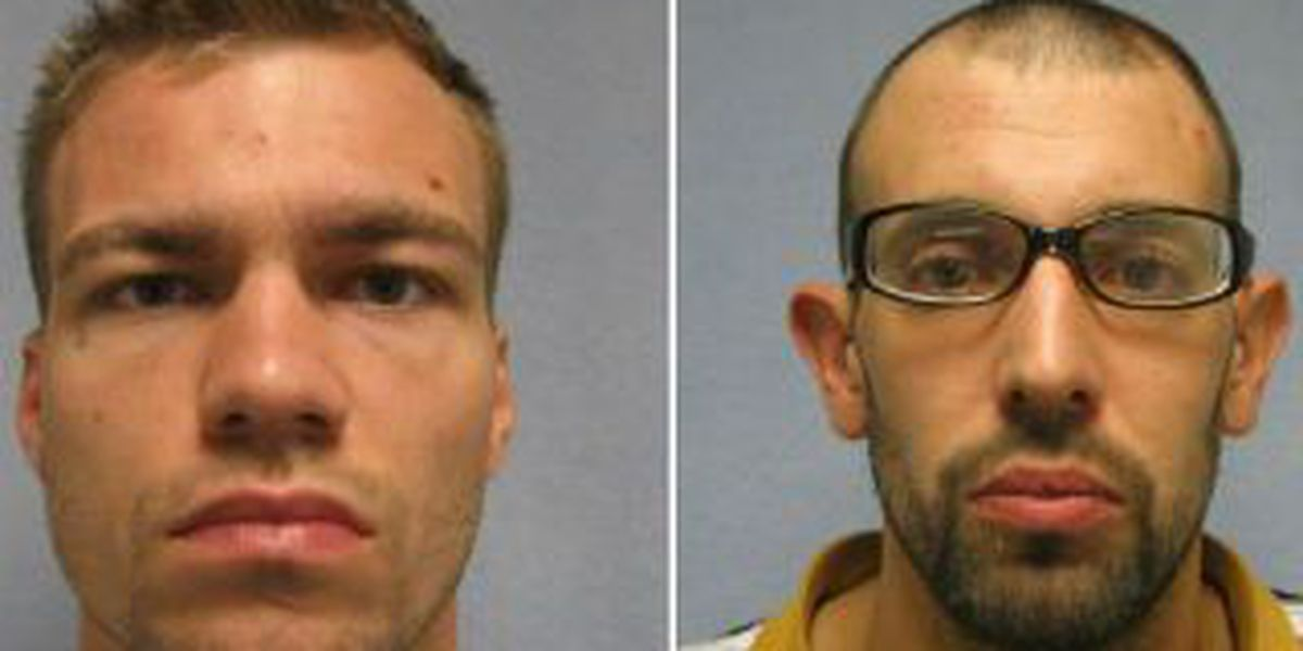 2 arrested in series of countywide break-ins