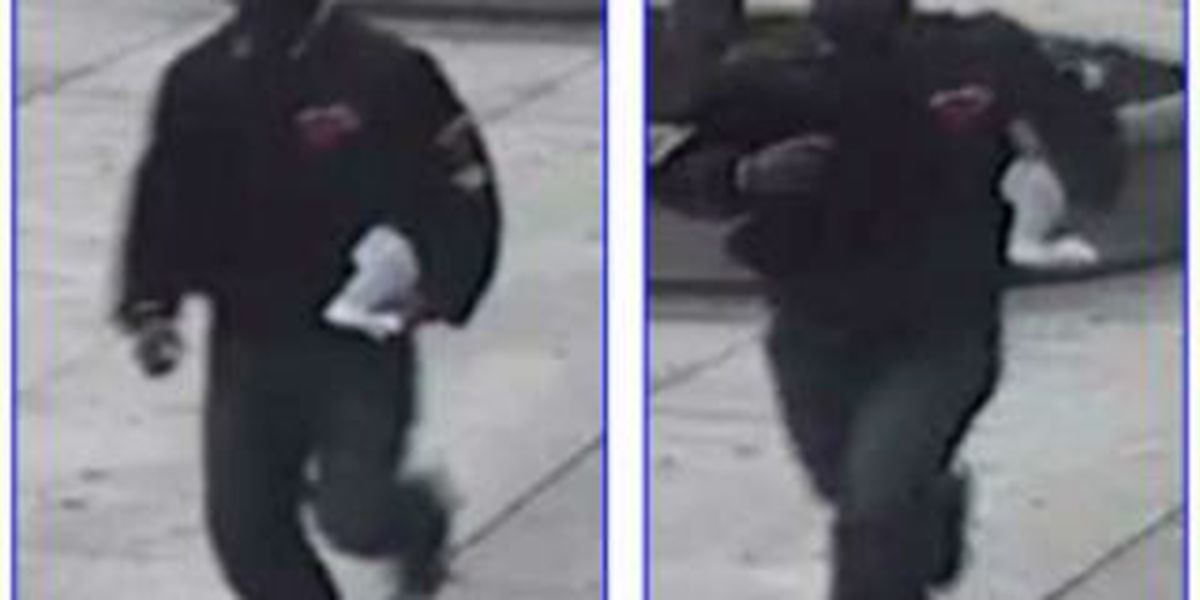 Arrest made in gross sexual imposition kidnapping incident at Cleveland library