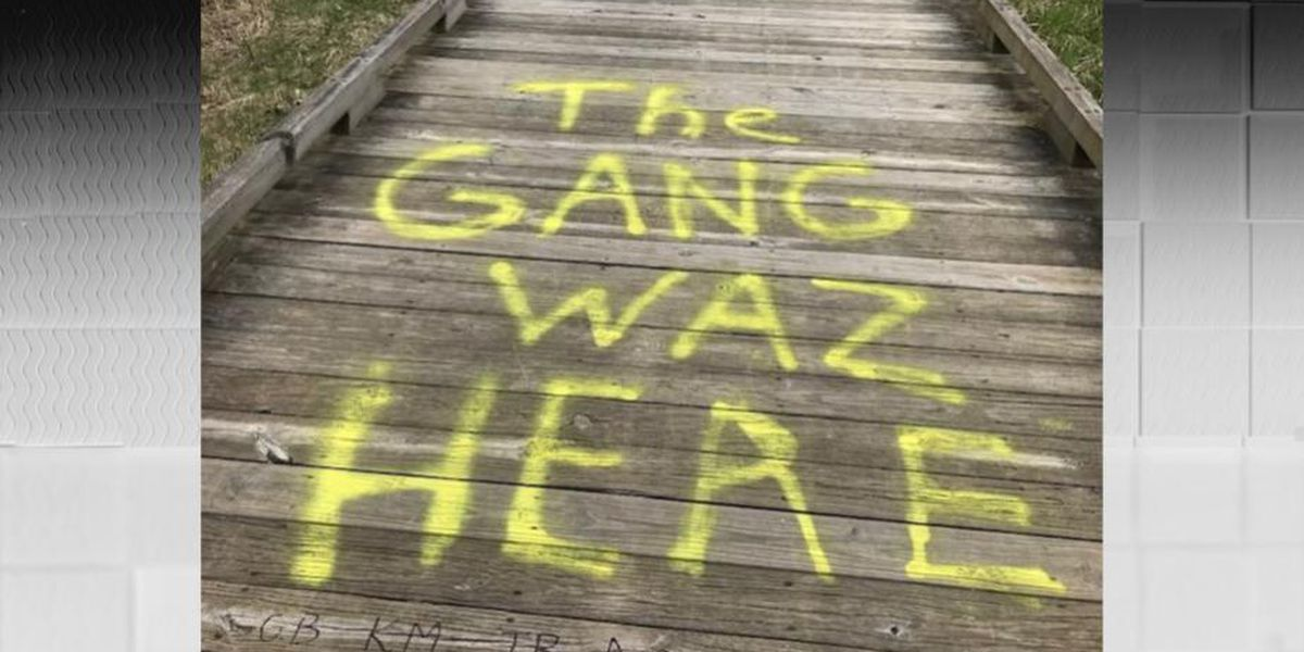 Vandals deface Stumpy Basin area of Cuyahoga Valley National Park