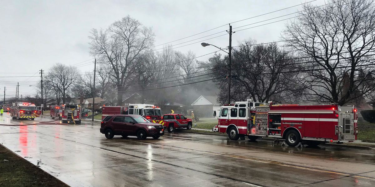 Caged dogs rescued from Richmond Heights house fire