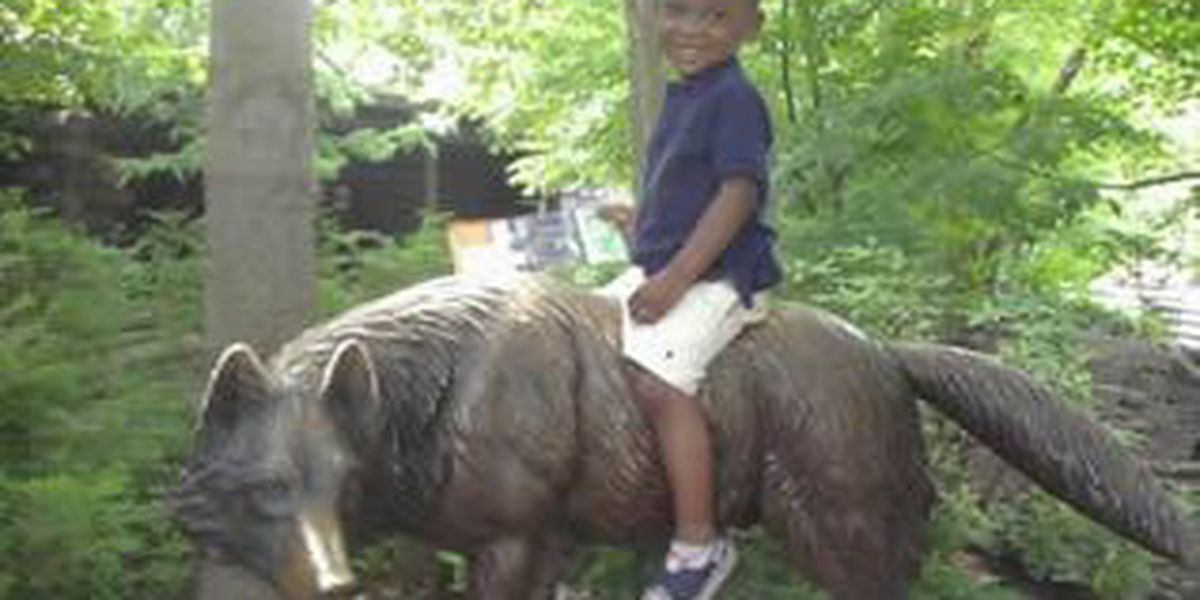 Police narrow down SUV in fatal hit and run that killed little boy