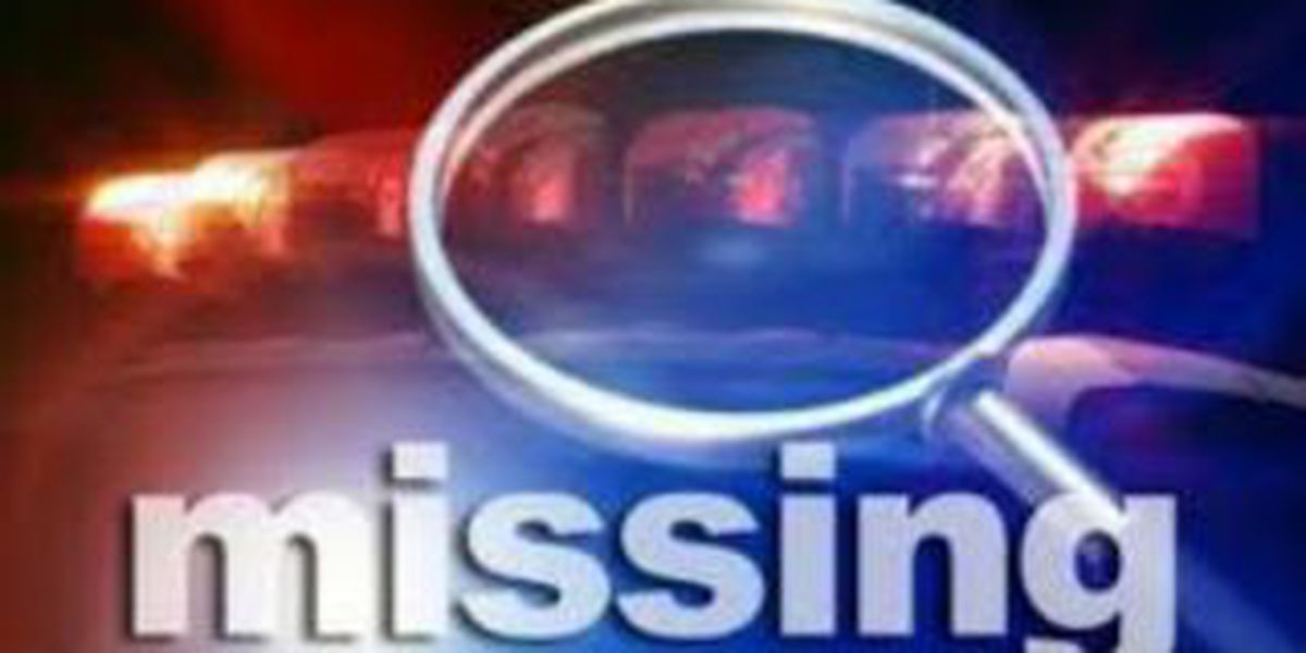 Authorities search for missing man in Berlin Wildlife Area